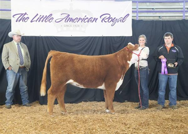 Brooke Jensen was the Champion Experienced Beef Cattle Showman
