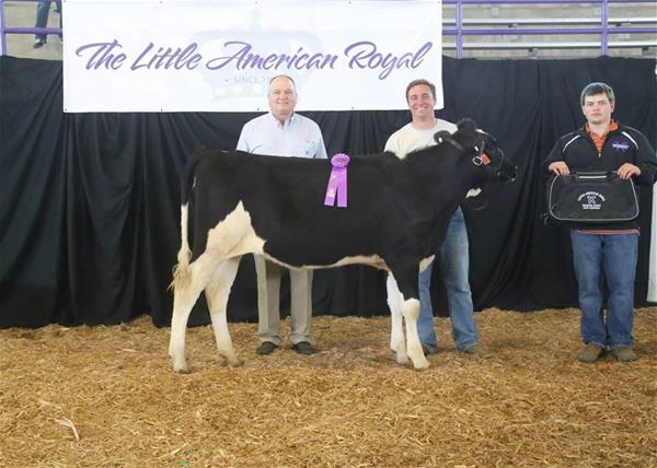 Rylan Loudan was the winner of the Novice Dairy Heifer Showman Category